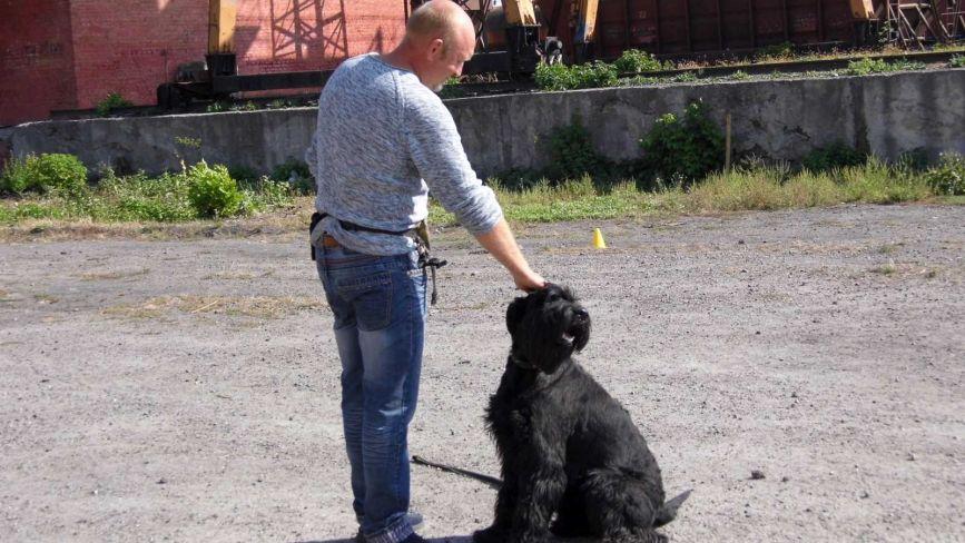 Олександр Шклярський: «Ідеальним місцем для собачих навчань є міський стадіон»