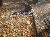 Козятинський парк сьогодні, 20 жовтня: жовтогаряче листя в перемішку зі сміттям