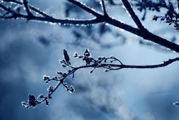 Погода у Козятині на 2 січня