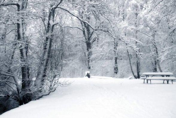 Прогноз погоди у Козятині на 10 лютого: обіцяють морози