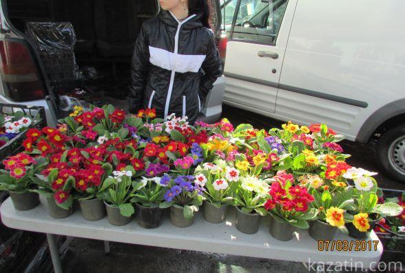 Розпочався квітковий бум