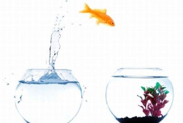 Ви боїтеся змін, чи сприймаєте їх легко?