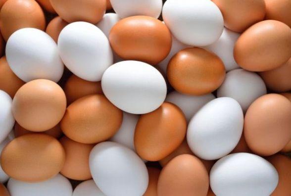 Різниця між білими і коричневими курячими яйцями