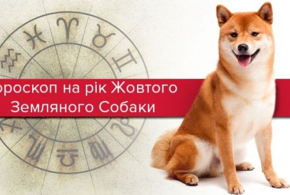 Гороскоп на рік Земляного Собаки