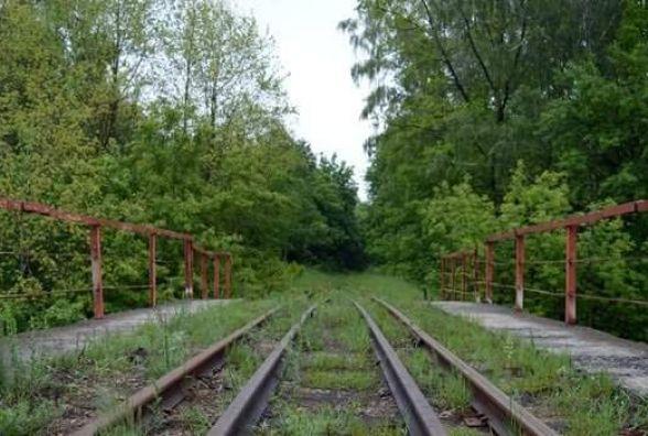 """На Вінниччині є свій """"Тунель кохання"""""""