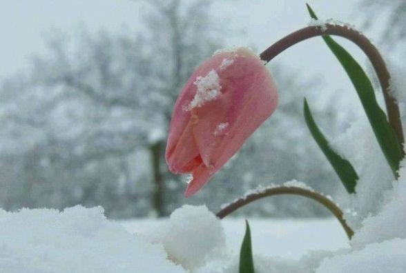 Погода на 18 березня у Козятині, прогноз