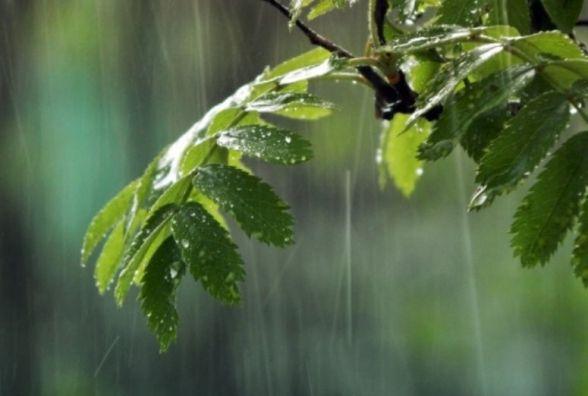 Очікується дрібний дощ, 20 травня 2018 року