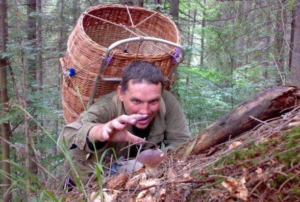 Грибне полювання: будь на сторожі