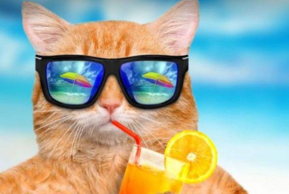 Одягайте панами та окуляри — 15 серпня у Козятині буде спекотним