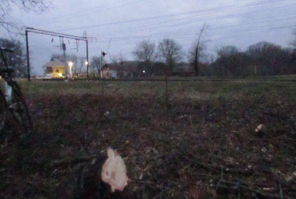 Виявилося, що лісосмугу вирізає локомотивне депо (ОНОВЛЕНО)