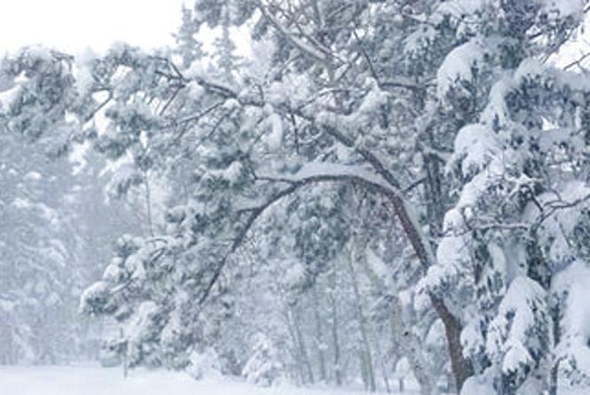 """Козятин сьогодні """"закидало"""" снігом"""