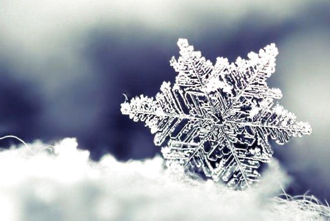 Погода у Козятині 11 лютого