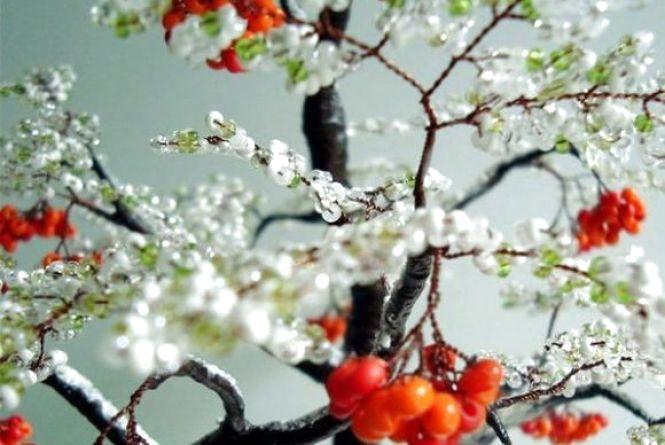 «Чудове аномальне тепло» омине Вінниччину. Що чекати від погоди 5 грудня?