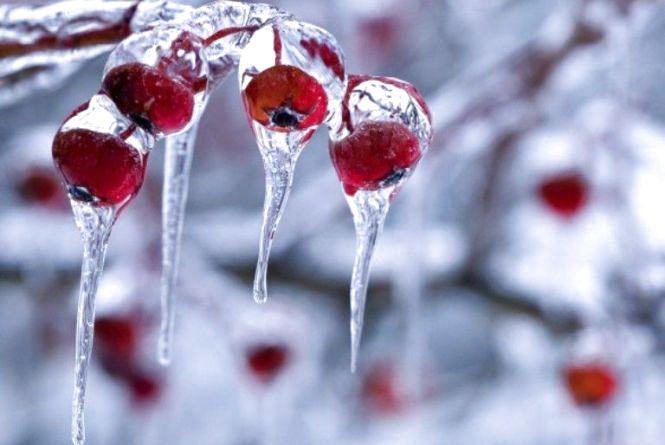 Погода в Козятині сьогодні, 12 грудня 2017 року
