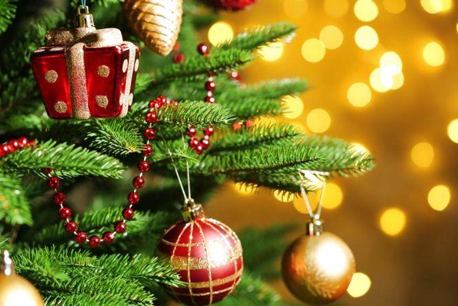 Цікаві факти про новорічну ялинку