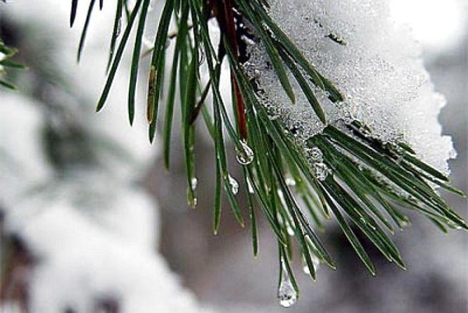 Погода на тиждень: коли в Україні відступлять морози