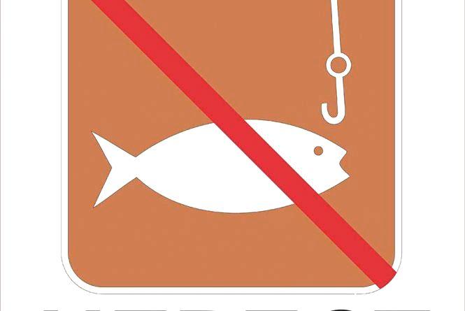 Де можна ловити рибу на Вінниччині