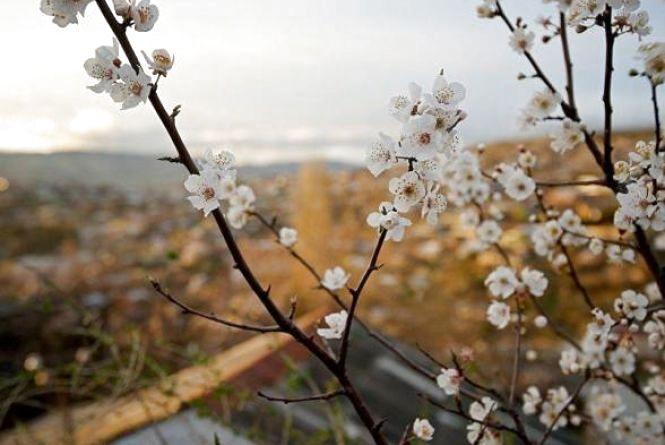 Прогноз погоди в Козятині на Великдень, 8 квітня 2018 року