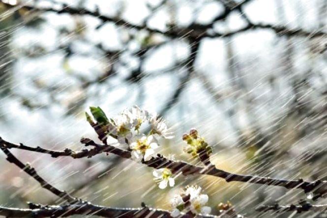 Яку погоду чекати козятинчанам 27 квітня. Прогноз