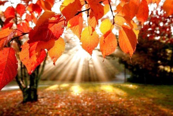 Сьогодні, 22 вересня, цілий день сонце