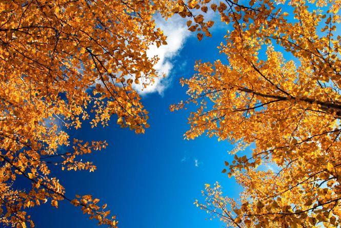 Сьогодні, 23 вересня, мінлива хмарність