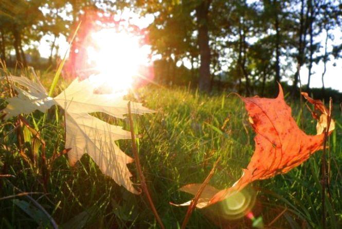 18 жовтня — літнева осінь чи осіннє літо?