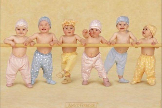 За 7 днів — 6 малюків