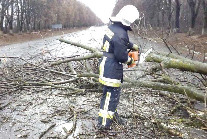 Негода в області: більше сотні рятувальників прибирали повалені дерева