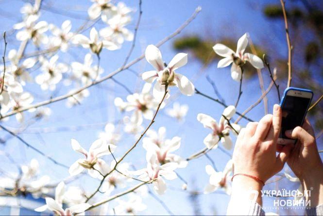 Весняна насолода: 19 квітня у Козятині тиха погода і +12°C
