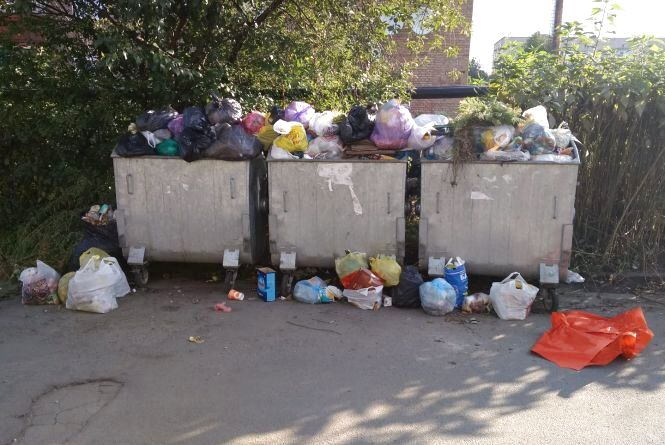 У Козятині по вулиці Мічуріна повні баки сміття. Люди обурюються в соцмережах