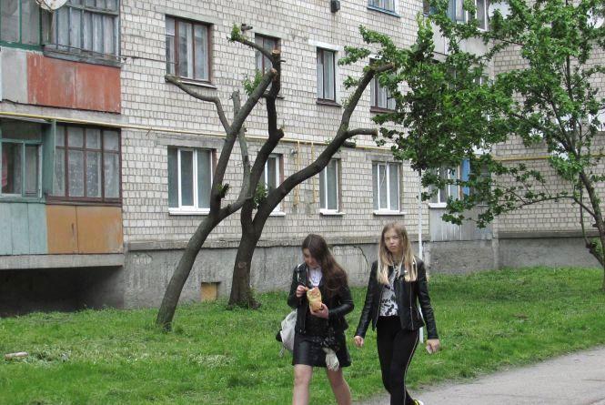 У місті чотири роки висаджують дерева, але зеленіше не стає. Чому?