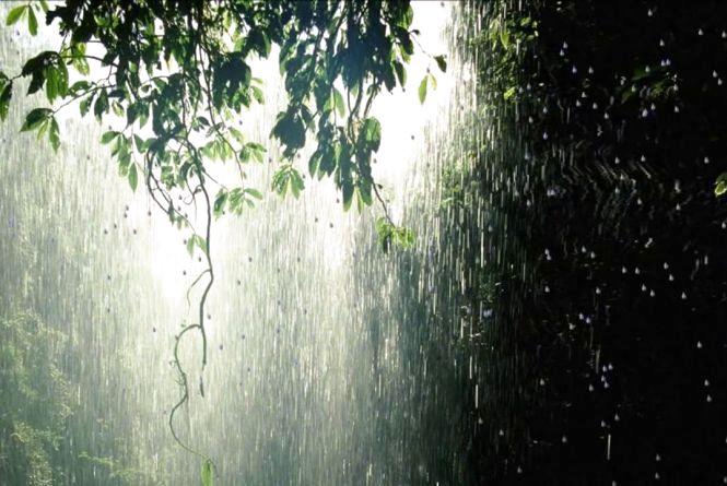Про погодні зміни: Україні пророкують аномальний клімат