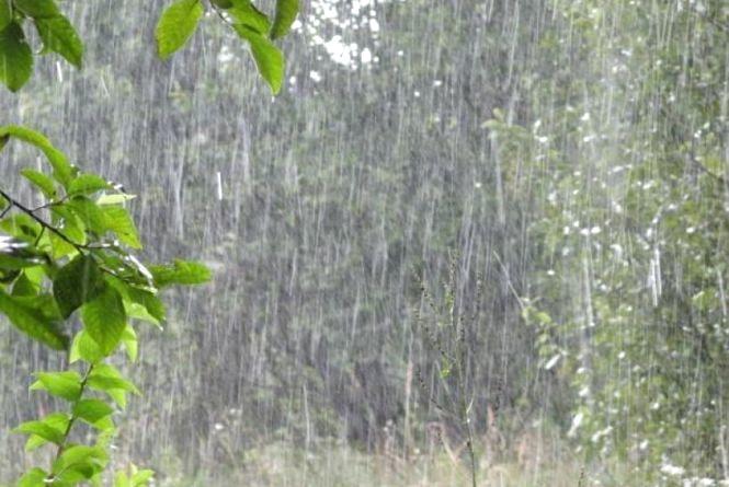 Свіжий прогноз: локально сильні зливи або сонце