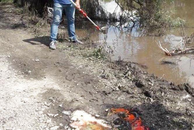 Хімікати, що забруднили річку Рось, були вкрадені у Козятинському районі
