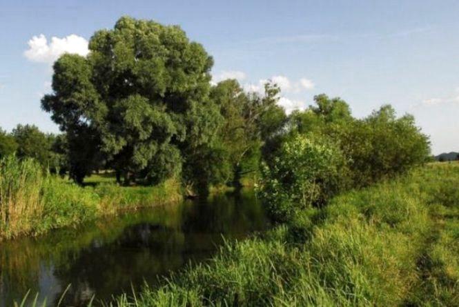 ДСНС дозволила використовувати воду із річки Рось, до якої потрапили хімікати (ВІДЕО)