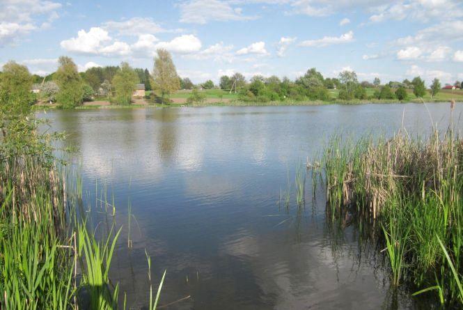 Нещастя на воді: в Самгородку втопився чоловік