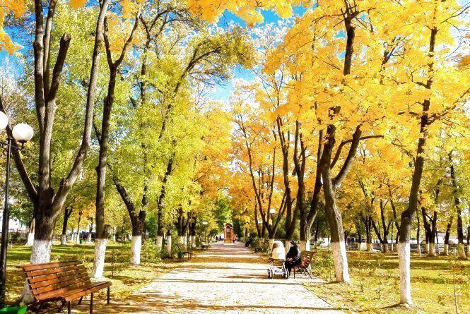 Тепло і з помірними опадами: синоптики розповіли про погоду в вересні