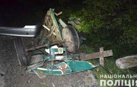 Біля Кордилівки  Mercedes переїхав чоловіка на підводі та врізався у вантажівку